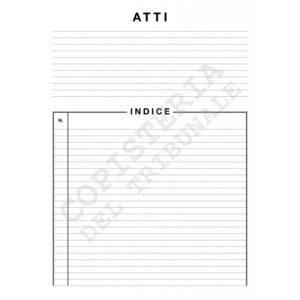 """Cartelline """"Atti"""" e """"Documenti"""""""